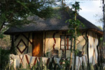 Discovery Bed & Breakfast Maun