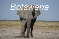 Wildlife and vast uninhabited wide open spaces make Botswana a remarkable vacation destination