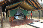Tented accommodation in kruger thornybush reserve