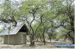 Onguma Leadwood Camp