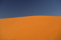 Climb the sand dunes of the Namib Desert