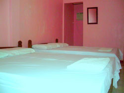 Alona Chrisah Apartelle Alona Beach Accommodation Bookings