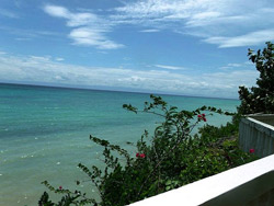 Coralandia Bohol Room Rates