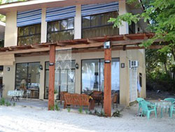 Momo Beach House Panglao Island Accommodation Bookings Rates