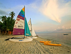 Coco Grove Beach Resort Apo Island Tour